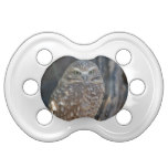 Burrowing Owl Pacifier