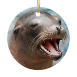 California Sea Lion Ornaments
