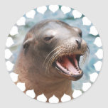 California Sea Lion Stickers