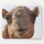 Camel Mouse Pad
