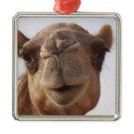 Camel Ornament