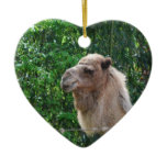 Camel Photo Design Ornament