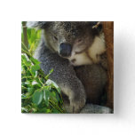 Casual Koala  Button