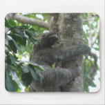 Climbing Sloth Mouse Pad