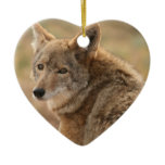 Coyote Ornament