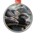 Cuddling Otters Metal Ornament