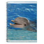 Cute Chattering Dolphin Notebook