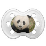 Cute Giant Panda Bear Pacifier