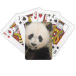 Cute Giant Panda Bear Playing Cards