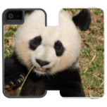 Cute Giant Panda Bear Wallet Case For iPhone SE/5/5s