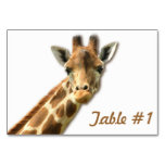 Cute Giraffe Table Number