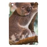 Cute Koala Cover For The iPad Mini