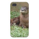 Cute Otter iPhone 4 Case