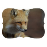 Cute Red Fox Card