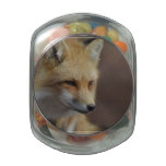 Cute Red Fox Glass Jars