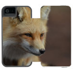 Cute Red Fox iPhone SE/5/5s Wallet Case