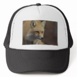 Cute Red Fox Trucker Hat