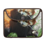 "Cute Red Panda Bear 13"" MacBook Sleeve"