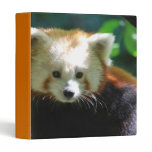 Cute Red Panda Binder