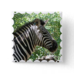 Cute Zebra Square Pin