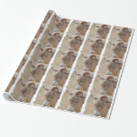 Donkey Wrapping Paper