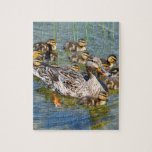 Duck Family Puzzle
