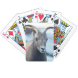 Face of a Bighorn Sheep Bicycle Playing Cards