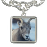 Face of a Bighorn Sheep Bracelet