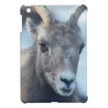 Face of a Bighorn Sheep Case For The iPad Mini