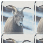 Face of a Bighorn Sheep Fabric