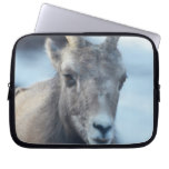 Face of a Bighorn Sheep Laptop Sleeve