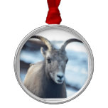 Face of a Bighorn Sheep Metal Ornament