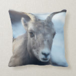 Face of a Bighorn Sheep Throw Pillow