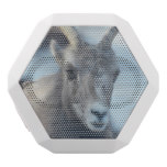 Face of a Bighorn Sheep White Bluetooth Speaker