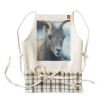 Face of a Bighorn Sheep Zazzle HEART Apron