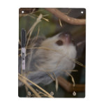 Face of Sloth Dry Erase Board