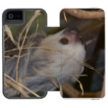 Face of Sloth iPhone SE/5/5s Wallet Case