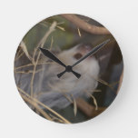 Face of Sloth Round Clock