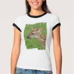 Fawn Ladies T-Shirt