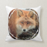 Fox Species Pillow