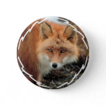 Fox Species Round Button