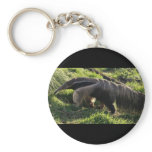 Giant Anteater Keychain