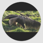 Giant Anteater Stickers