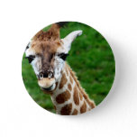 Giraffe Photo Round Button