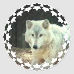 Gray Wolf Stickers