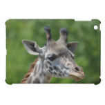 Great Giraffe iPad Mini Case