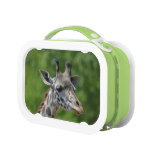 Great Giraffe Lunch Box