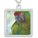 Green Cheek Conure Necklace
