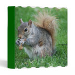 Grey Squirrel Binder