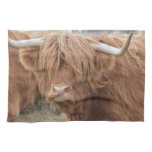 Highland Cow Towel